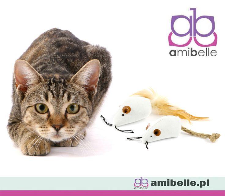 🐈 Każdy kot to łowca. 🐁 Myszki z naturalnych materiałów będą wspaniałą zabawką. 💝 www.amibelle.pl #zabawka #dlakota #myszki #dozabawy