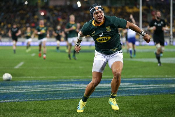 Cheslin Kolbe Photos Photos New Zealand Vs South Africa The Rugby Championship Rugby Championship Hot Rugby Players Springbok Rugby