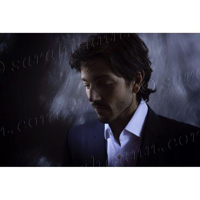 Diego Luna is beautiful.