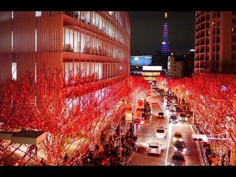 TOKYO Christmas illuminations 東京クリスマスイルミネーション 東京観光 夜景の名所 Discover Nippon - YouTube