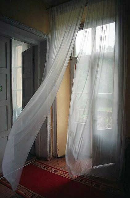 Orchidaaorchid Curtain By Paul Paper White Curtains