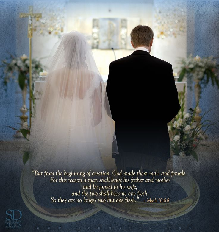 www.Schmalen.com Twenty-Seventh Sunday in Ordinary Time Sunday, October 4th Gospel Reading: Mark 10:2-16