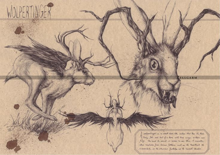 Wolpertinger by Zellgarm.deviantart.com on @DeviantArt