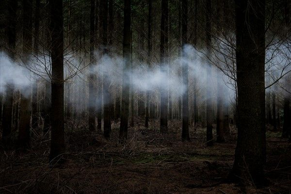 """Between-the-Trees-6-2013 Kunstenaar Ellie Davis  Ellie Daviesis een getalenteerde multimedia kunstenaar. Al zeven jaar lang verandert zij de bossen en landschappen van het Verenigd Koninkrijk in prachtige en spookachtige kunstwerken met haar fotografie.  """"Deze aangepaste landschappen functioneren op een aantal niveaus. Ze zijn een weerspiegeling van mijn persoonlijke relatie met het bos, een meditatie over universele thema's die betrekking hebben op de psyche en het in twijfel trekken van…"""