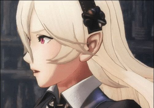 I wonder if this means male Corrin is still gonna be playable Or important Or existent In FE Warriors Also I REALLY want to play as Robin I could totally see a level revolving around a Grima controlled Robin sending out evil forces to attack stuff but then once you do something special Robin snaps out of it and then you find the true enemy That'd be great