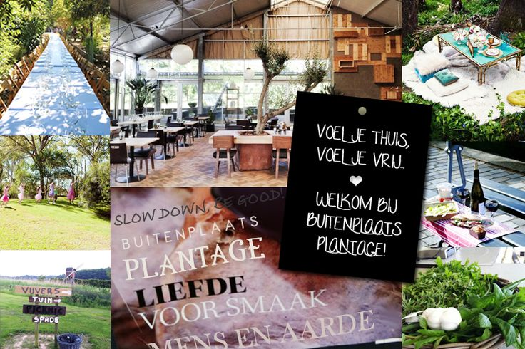 Buitenplaats Plantage Vogelenzangseweg 49b Vogelenzang buitenplaatsplantage.nl
