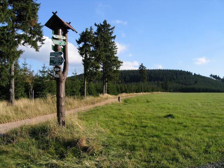 Der Rennsteigwanderweg bei Tambach-Dietharz. 1)