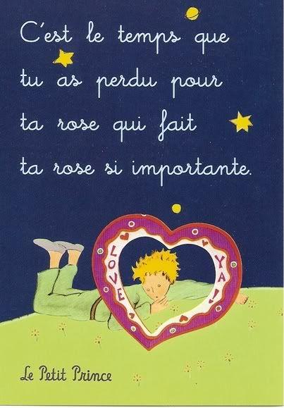 """""""C'est le temps que tu as perdu pour ta rose qui fair ta rose si importante""""  Le petit prince"""