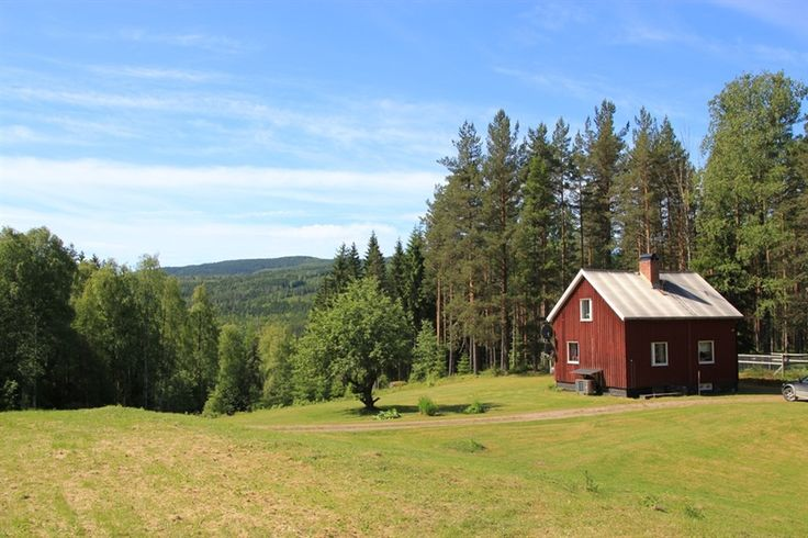 Havån 1:36 o 1:37, Torsby - Skogsmäklarna, Störst på skog i Värmland - Fastighetsförmedling och rådgivning för skogs- och jordbruket