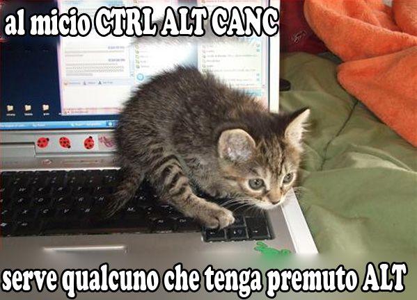 ctraltcanc.jpg (599×432)