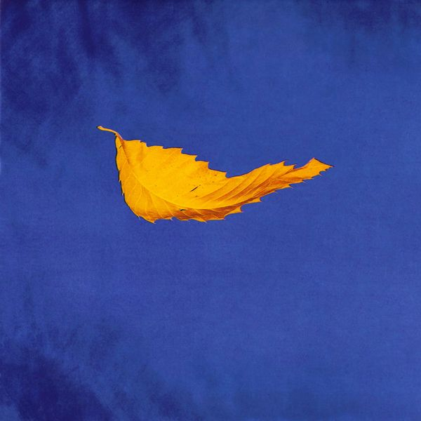 "New Order ""True Faith"" cover, 1987"