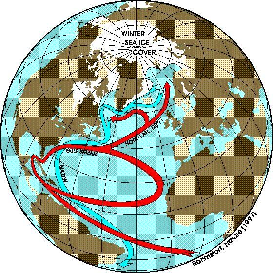 North Atlantic Current   Thermohaline Circulation - Fact Sheet by Stefan Rahmstorf