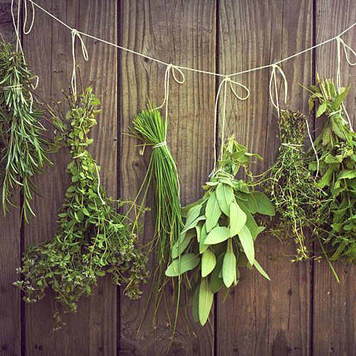 Sunset's Guide on How to Dry Herbs