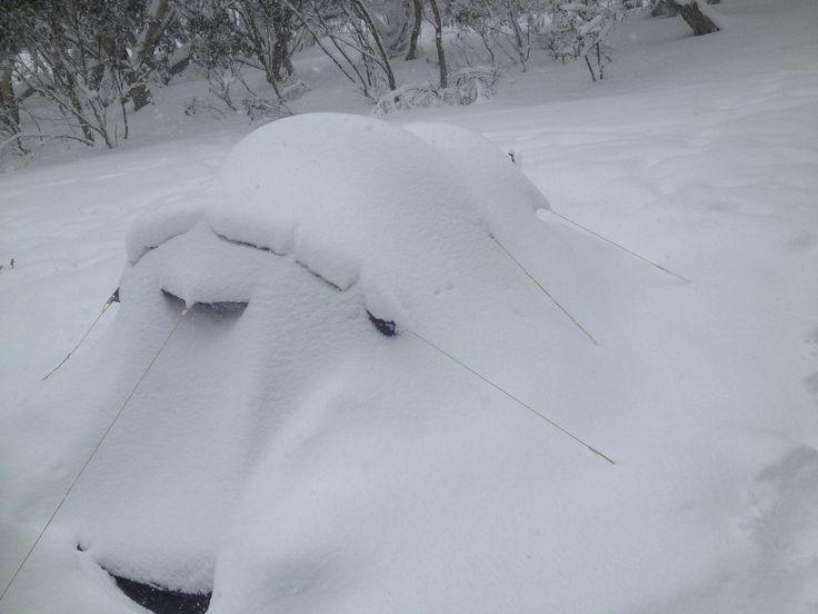 Tent looks berried in 20cm of snow 2013  www.australianphotos.com.au