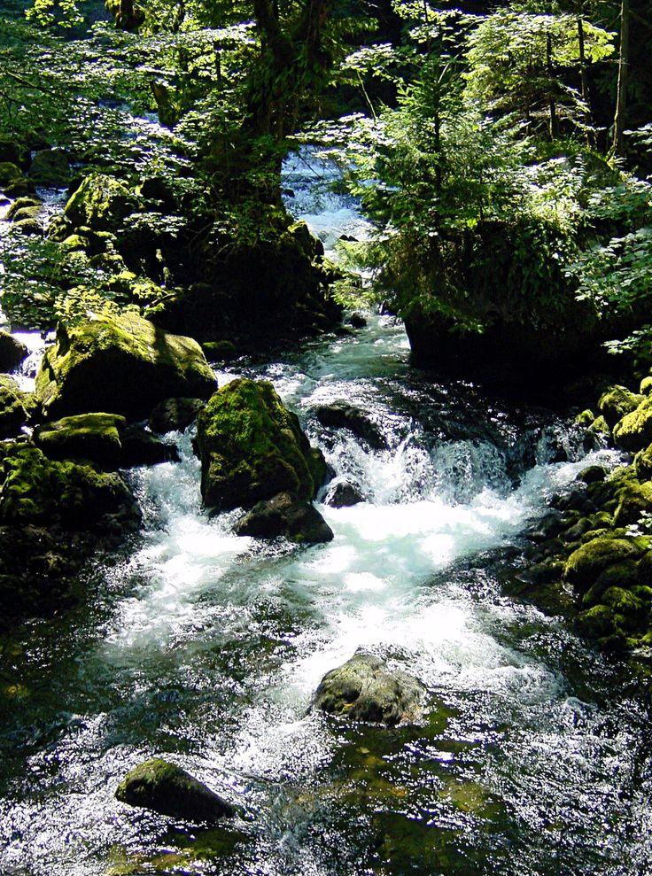 Rivière (Vallorbe)