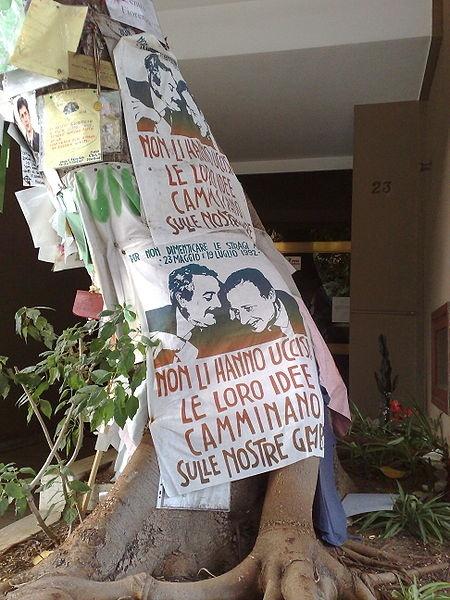 """La FOTO DEL GIORNO nel blog """"TaccuinodiAmelie"""" -> http://taccuinodiamelie.wordpress.com/2012/05/23/foto-del-giorno-lalbero-di-falcone/ (su Twitter @TaccuinoAmelie)"""
