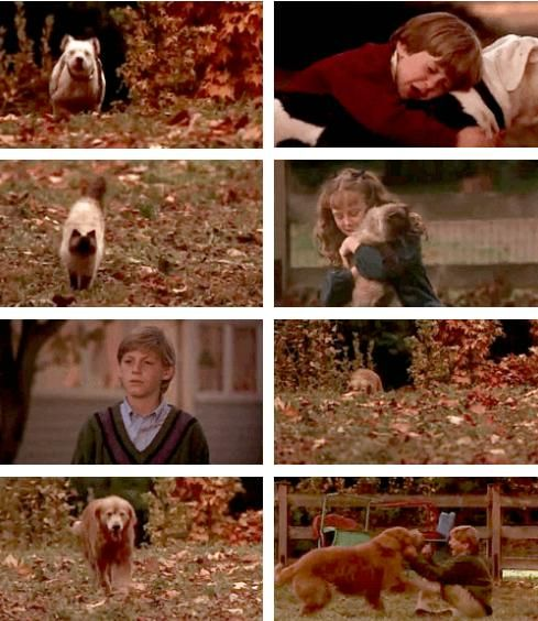 Homeward Bound: The Incredible Journey *sobbing* <3