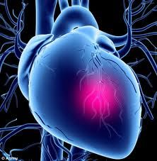 New drug said to reduce heart damage during surgery