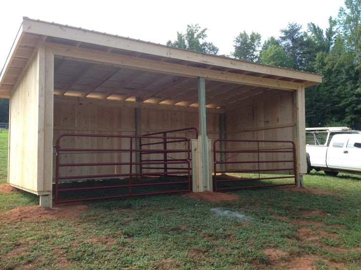 """Brilliant run-in shed, which can also be set up as one large stall or two smaller ones, so that horses may be confined, if necessary. These gates can swing back against the walls and be latched open to provide a safe open shelter when the """"stalls"""" are not needed."""