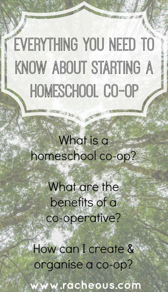 Everything You Need To Know About Starting A Homeschool Co-op from Racheous