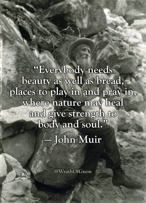 """""""Everybody needs beauty as well as bread, places to play in and pray in, where nature may heal and give strength to body and soul."""" — John Muir"""