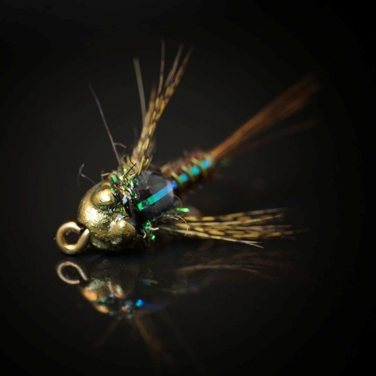 491 best ideas about freshwater flies on pinterest for Fishing channel on dish