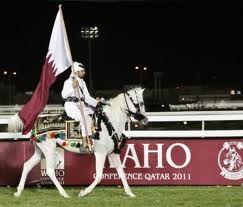 old arabian horse art - Google Search