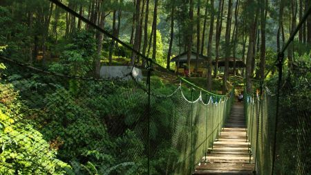 Suaka Elang Loji Bogor Jawa Barat