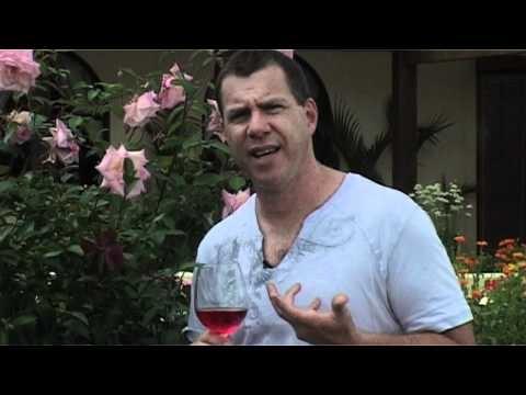The Rosarian Matakana Rose with Darryl Soljan at Ascension Wine Estate.