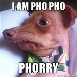 """Tuna, the """"Phteven"""" dog - I am pho pho  phorry"""