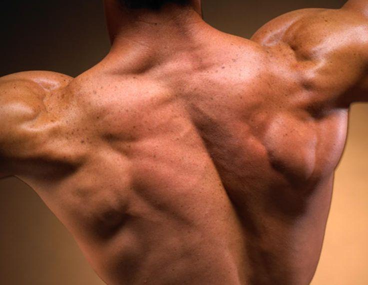 The 11 Best Traps Exercises http://www.menshealth.com/fitness/best-traps-exercises?slide=1