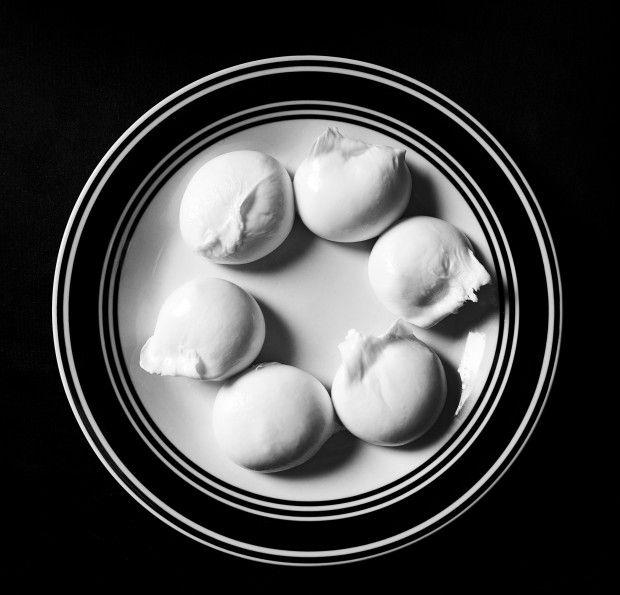 How to Make Old-World Mozzarella and Burrata, According to DiStefano Cheese photo