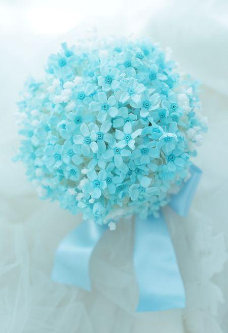 ブルースターの花言葉は「信じ合うココロ」「幸福な愛」♡結婚式に渡す両親への花束のおしゃれ一覧♡ウェディング・ブライダルの参考に♪
