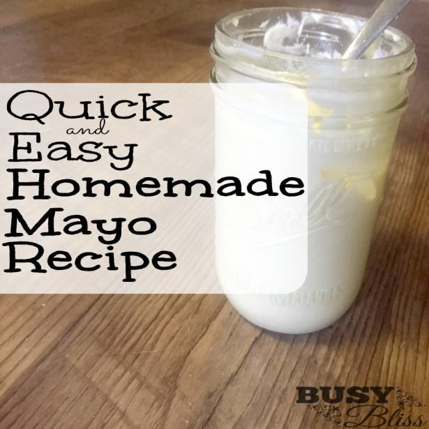 Quick and Easy Homemade Mayo Recipe Mayo is one of those condiments that people either love or hate. I can't think of another condiment that evokes such strong opinions in people. I'm on Team Mayo, myself. It's my favorite condiment for just about any sandwich. I even love to mix it with ketchup and dip … … Continue reading →