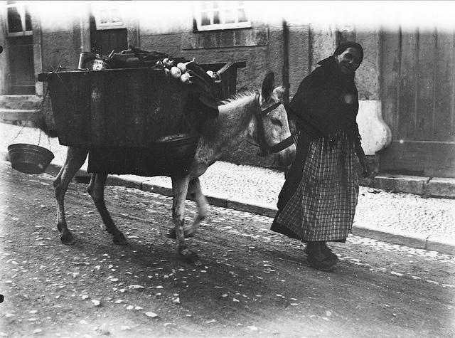Vendedeira de legumes, Lisboa, Portugal    Vendedeira de legumes e o seu burro nas ruas de Lisboa. Anos 20 do século 20.  Fotógrafo: Mário Novais.  Data de produção da fotografia original: anos 20 do século 20.