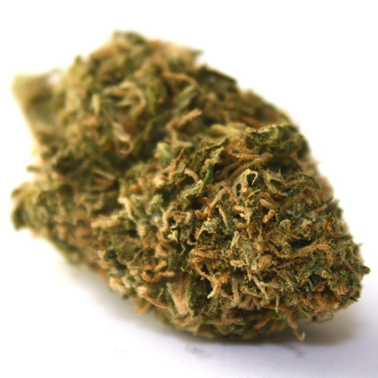 Cherry Pie is a heavy topshelf indica strain that is a perfect remedy for insomnia, stress, and loss of appetite!! The high kicks in quickly and lasts for hours!! #cherrypie #indica #heavy #topshelf #couchlock #medicine #prop215 #socal #collective #sd #flower #bud #mmj #nug #tree #greens #420 #gethigh #letsgetmedicated #fire #dank #thc #weedstagram #hightimes