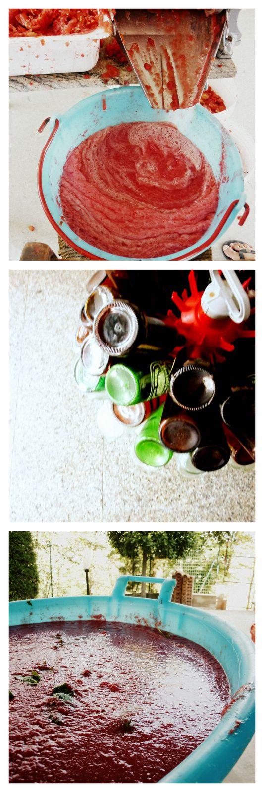 VERDEPOMODORO: Come preparare la passata di pomodoro