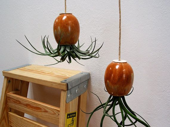 Knitted Plant Pods | Michael McDowell Ceramic Planters. Hanging Air ... Amazing Design
