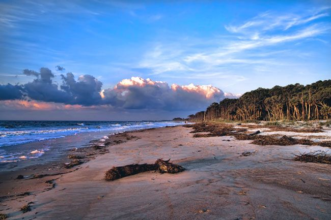 Hunting Island - SC  Been to many beaches - this is quite possibly one of the coolest