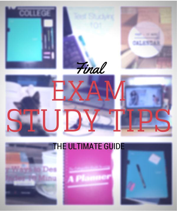 Exam MLC study guide Spring 2013 - Actuarial Bookstore