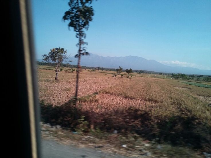 Omw to Madiun city