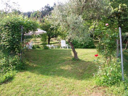 Holiday House Volpe Rossa in Massa Macinaia - Capannori (Tuscany): garden