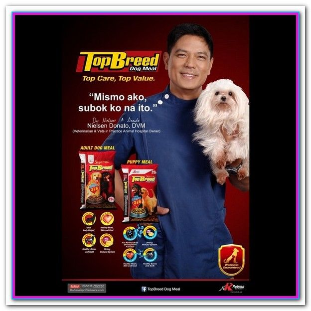 Best Brand Of Dog Food In Philippines Best Dog Food Dog