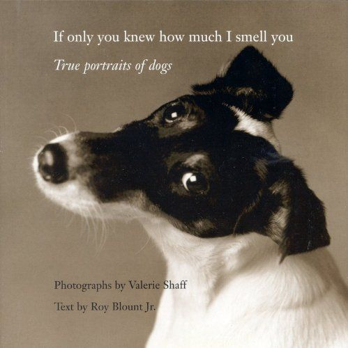 14 best books images on pinterest doggies dogs and adorable animals if only you knew how much i smell you true portraits of dogs by valerie fandeluxe Choice Image