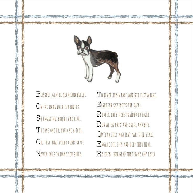 Beloved Boston Terriers!