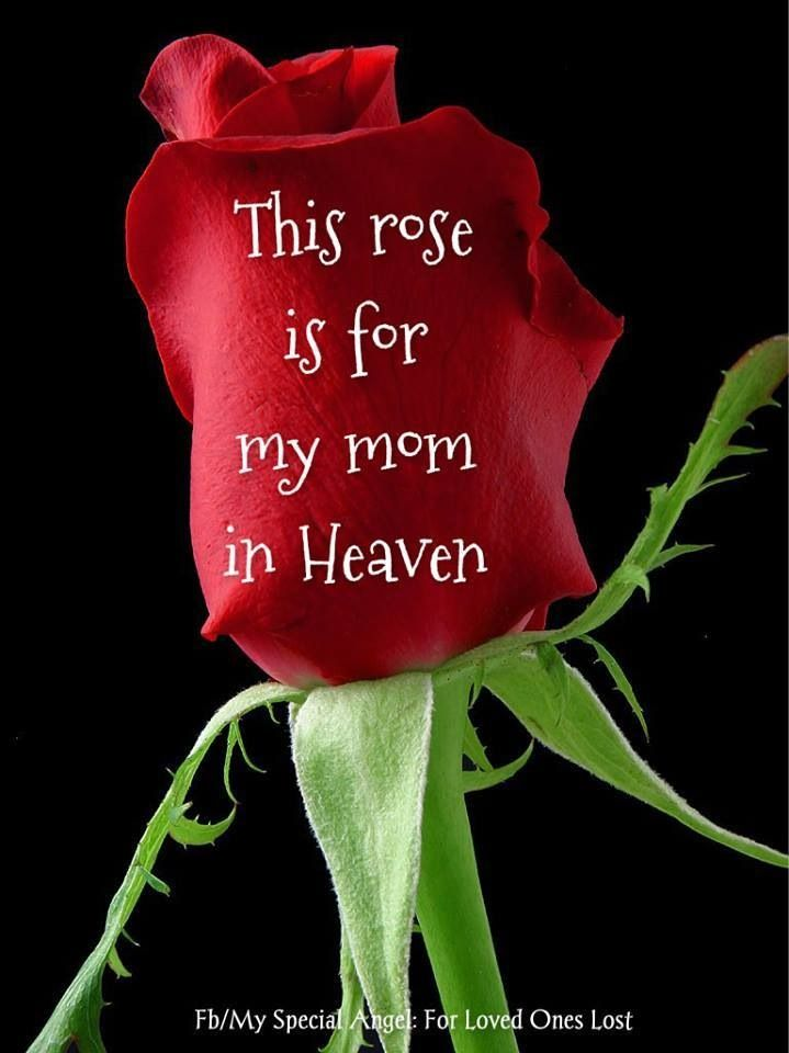 Love and miss you Mom...more every day.