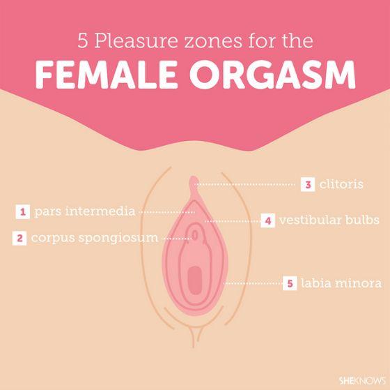 108 Best Fertility Awareness Images On Pinterest -3590