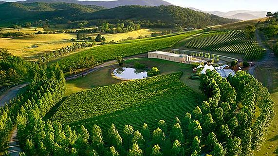 Great Ocean Road Tours | Yarra Valley Tours | Phillip Island and more