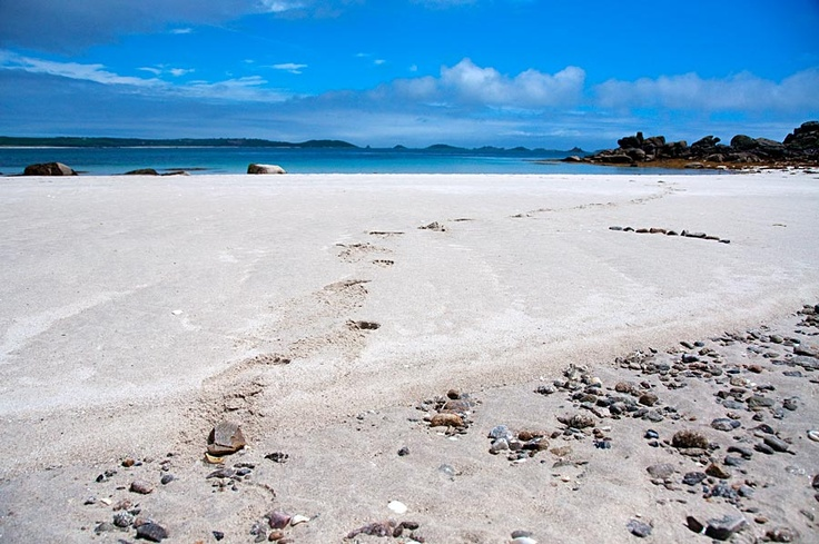 SCILLY ISLANDS! Cornwall England.... The sand sparkles on these beautiful, tranquil islands. Soft and silky it dusts your skin with a glittery sheen.