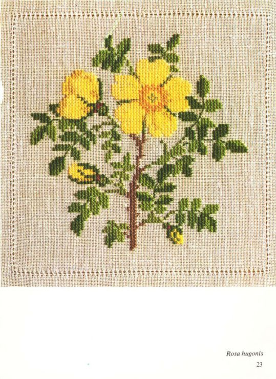 Gallery.ru / Фото #8 - Cross Stitch Pattern in Color - Mosca